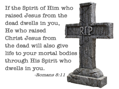 If the Spirit of Him who Raised Jesus from the Dead He who raised Jesus from the dead will also give life to your mortal bodies who through His Spirit who dwells in you. Romans 8:11